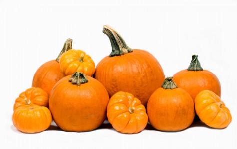 Pumpkin Lovers