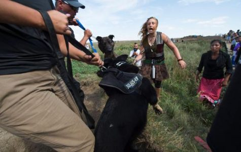 Tension grows over oil pipeline in North Dakota, presidential candidate Jill Stein arrested