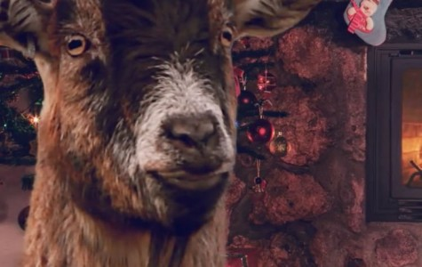 Staff Picks: All I Want for Christmas is a Goat