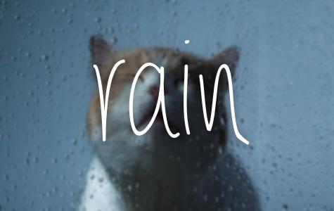 NWA rainfall