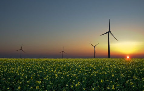 The Future of Alternative Energy Sources