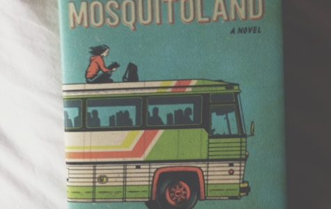 Mosquitoland by David Arnold was alright
