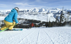 Alternate Text Not Supplied for Crested Butte skier.